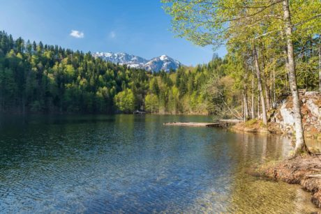 Frühlingsmorgen am Toplitzsee